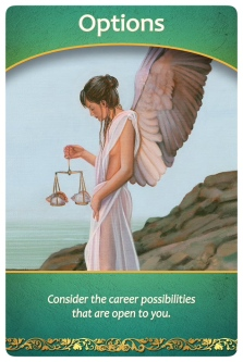 Options: Consider the career possibilities that are open to you from Life Purpose Oracle Cards