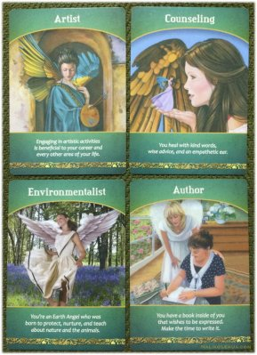 Artist / Counselling / Environmentalist / Author ~ Life Purpose Oracle Cards
