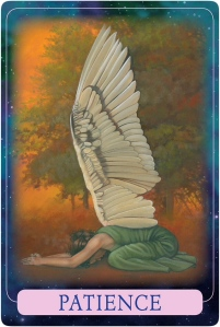 Patience from Indigo Angel Oracle Cards