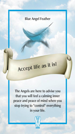 Accept life as it is! ~The Angel Feather Oracle