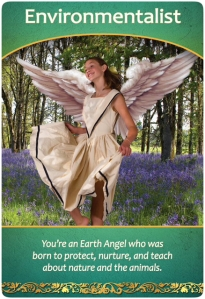 Environmentalist ~ Life Purpose Oracle Cards