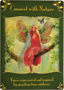 Connect with Nature from the Magical Messages from the Fairies