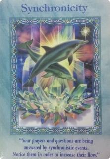 シンクロニシティ/Synchronicity 〜マジカルマーメイド&ドルフィンオラクルカード
