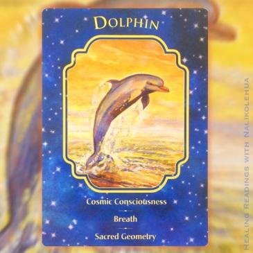 イルカ/Dolphin エンジェルドリームオラクルカード
