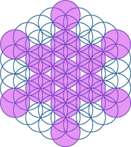 Fruit of Life in Flower of Life