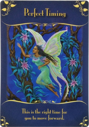 Perfect Timing from the Magical Messages from the Fairies Oracle Cards