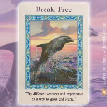 Break Free of the magical mermaids and dolphins oracle cards