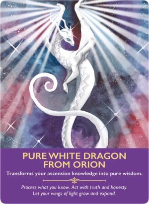 Pure White Dragon from Orion/オリオンの白い龍 〜ドラゴンオラクルカード