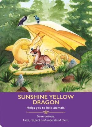 Sunshine Yellow Dragon/サンシャイン・イエロー・ドラゴン 〜ドラゴンオラクルカード