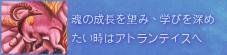 アトランティス 〜ヒーリングリーディング