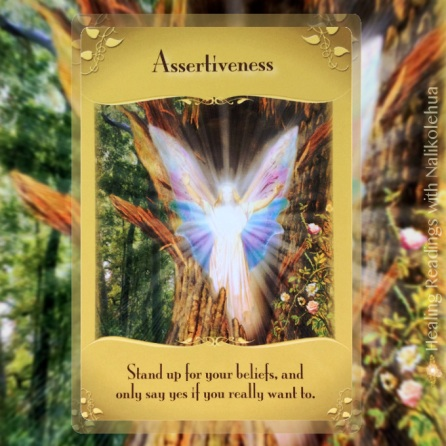 Assertiveness from the Magical Messaged from the Fairies Oracle Cards: Stand up for your beliefs, and only say yes if you really want to.