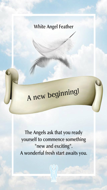 A new beginning from the Angel Feather Oracle